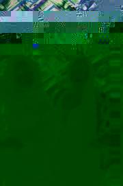 cumbiasazo0117-1214