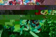 emeraldcity0619-3163