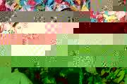 emeraldcity0619-3283