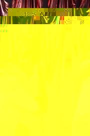 flyhoneybooth08312019-0661