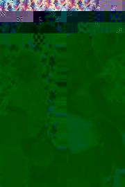 flyhoneybooth08082019-5753