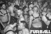 imlfurball0519bw-2031